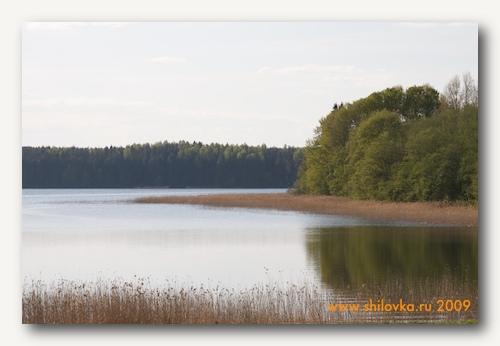 Залив около Шиловки